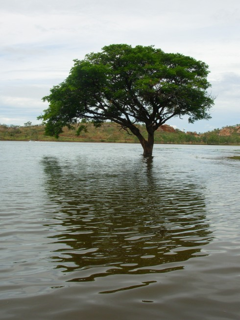 Flooded Lake Moondara - from the wettest season in 10 years or so.